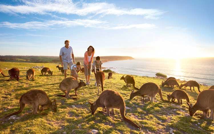 Rekomendasi Tempat Wisata Terbaik di Australia