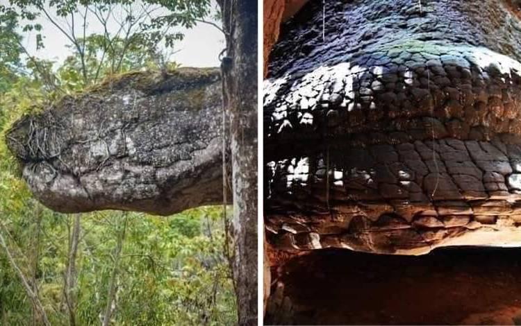 Viral! Penemuan Batu Mirip Ular Raksasa di Thailand
