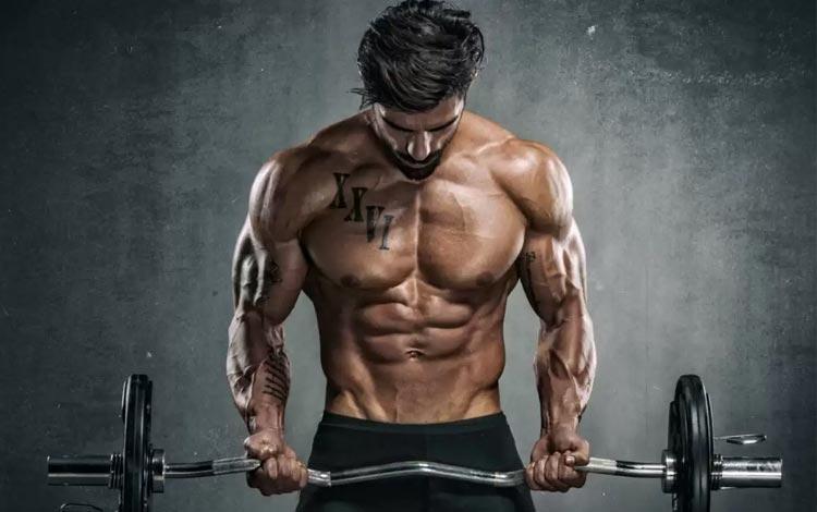 Susu gym penambah masa otot